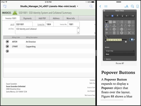 FileMaker14Go_w_iBooks_Splitview