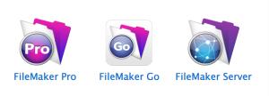 FileMaker_13